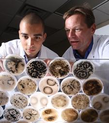 Seed pathologist and student with petri dishes
